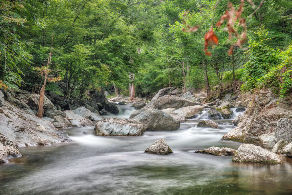 Great Smoky Mountains i Tennessee.