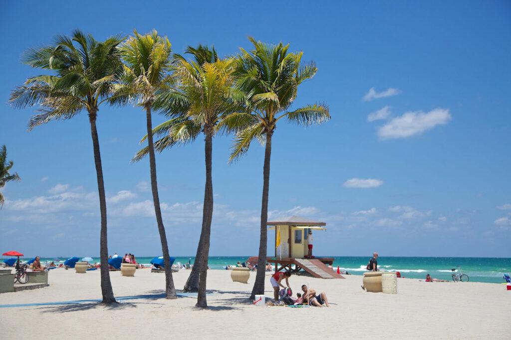 Strand och palmer i Fort Lauderdale, Florida.