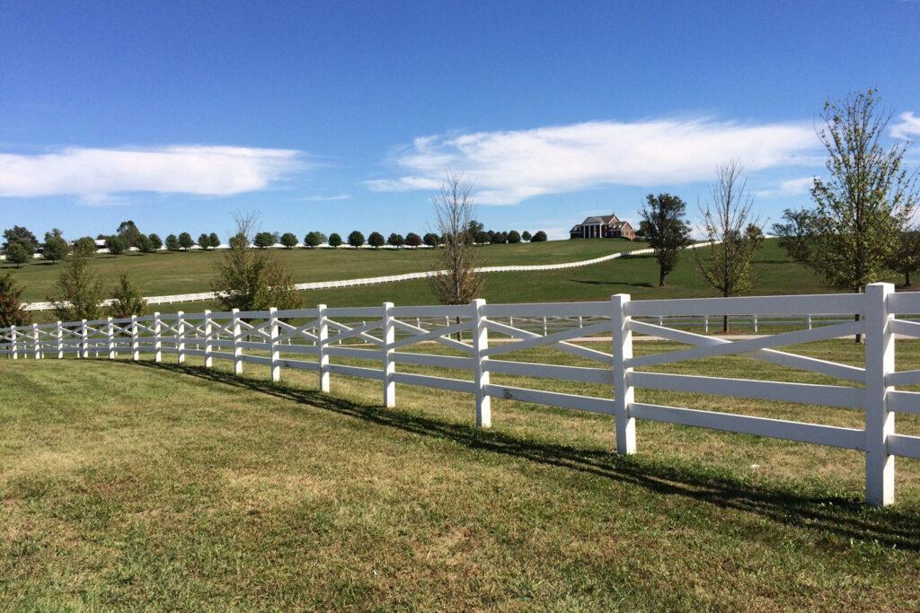 Hästfarm i Kentucky.