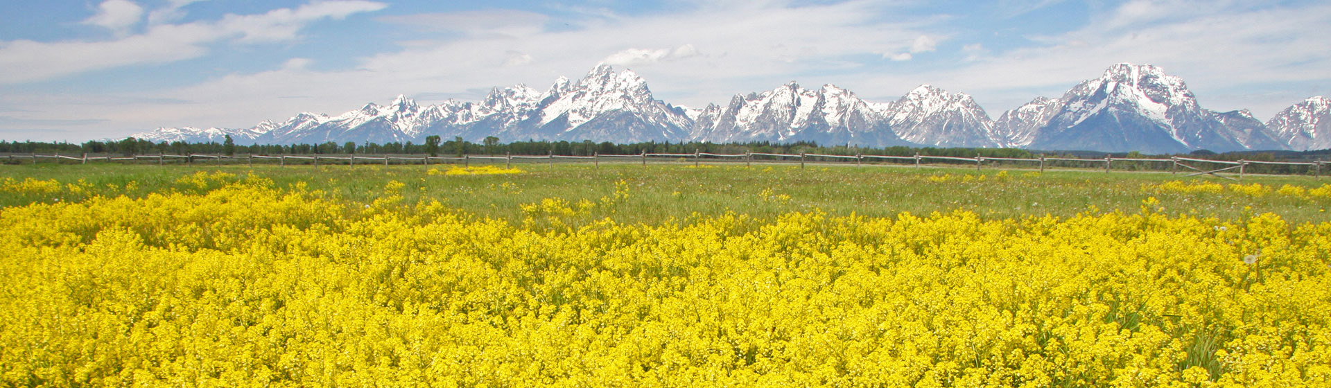 Grand Teton, Wyoming.