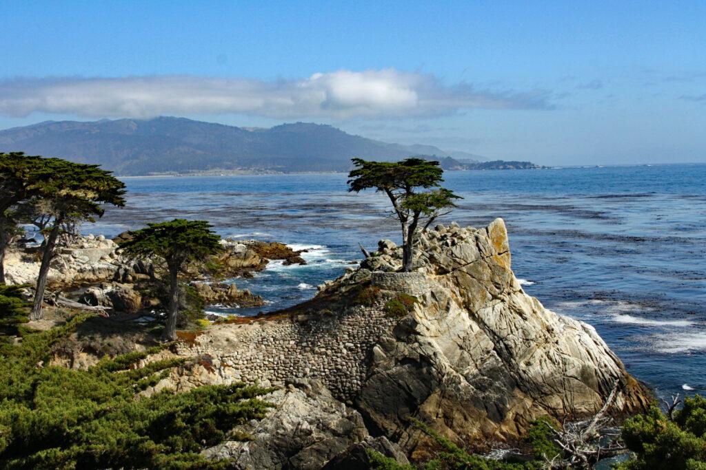 Lone Cypress längs 17 Mile Drive, Kalifornien.